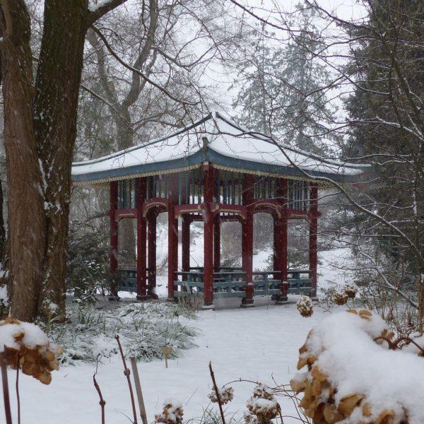 Schnee im Botanischen Garten Berlin